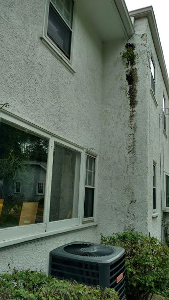 Water Damage - Stucco